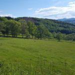 tramayes-paysage-16_900.jpg