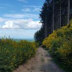 tramayes-paysage-15_900.jpg