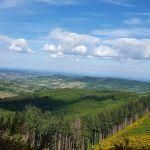 tramayes-paysage-12_900.jpg