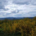 tramayes-paysage-5_900.jpg